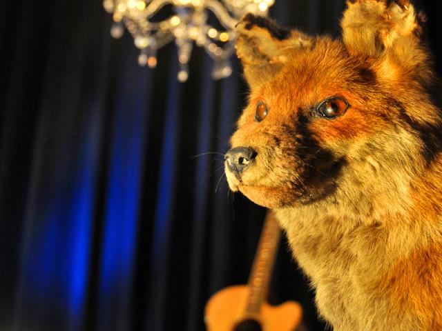 ENDSTATION SEHNSUCHT – Der Fuchs